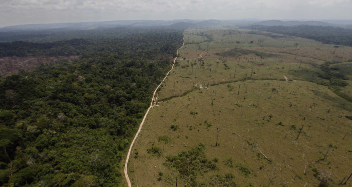 Odlesňování tropického deštného pralesa na severu Brazílie
