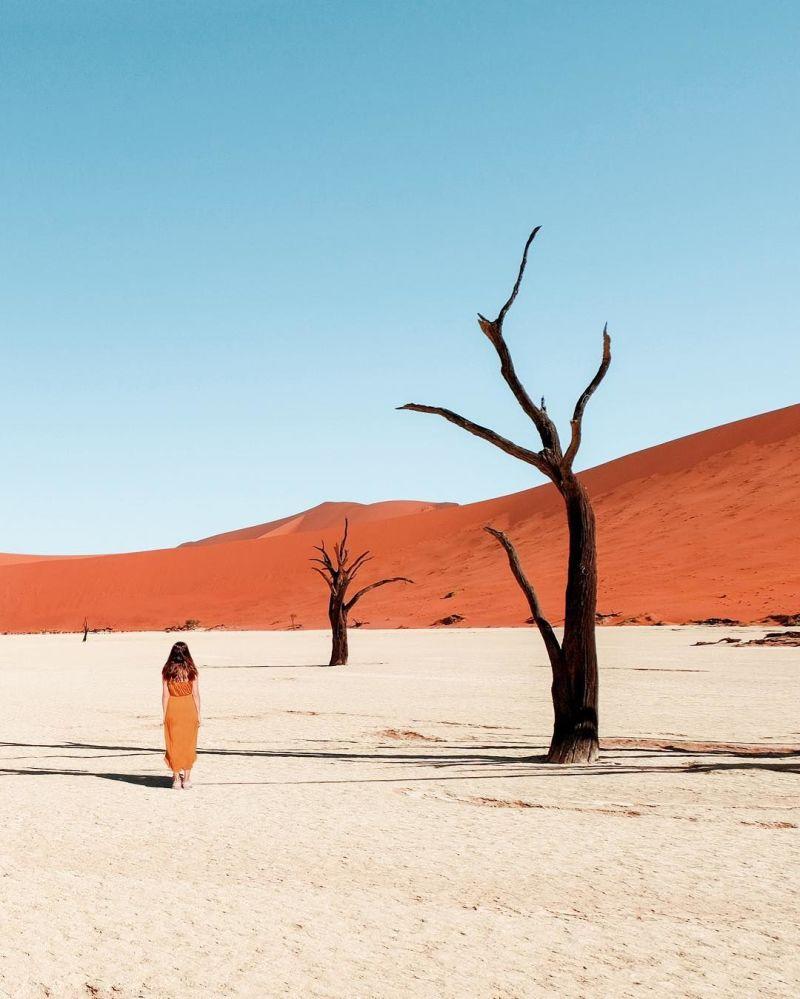 Fotografie přírody Namibie