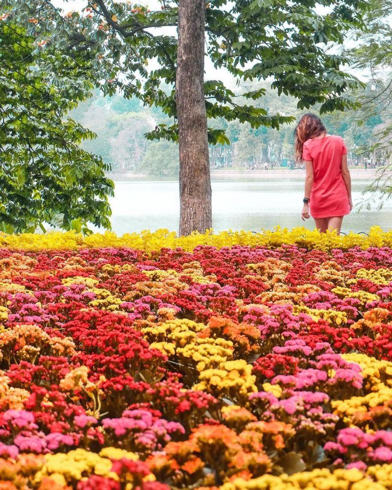 Příroda Hanoje na fotografii projektu