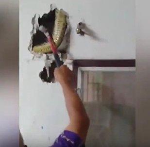 Muž zaslechl divné klepání ve zdi. Původ hluku vás překvapí!