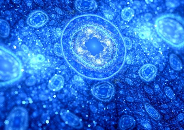 buňky