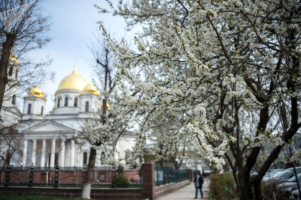 Jarní probouzení Krymského poloostrovu