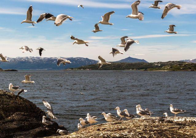 Sever Norsko. Ilustrační foto