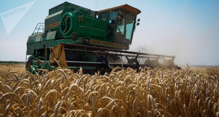 Farmáři z Jihoafrické republiky utíkají do Ruska