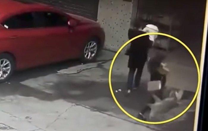 """Číňanka byla hospitalizována kvůli tomu, že na ni z """"oblohy"""" spadl pes"""