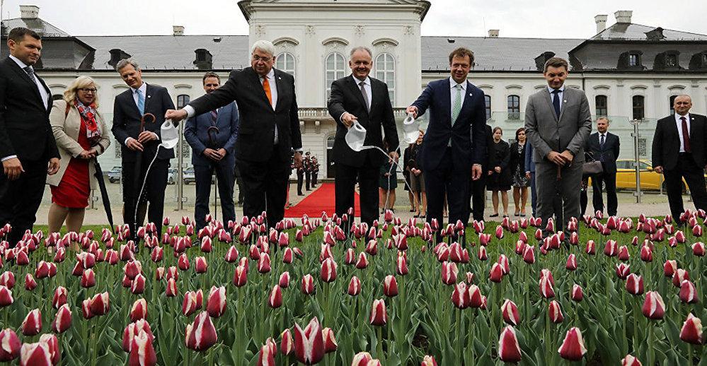 Slovenský prezident Andrej Kiska a velvyslanec Nizozemského království Henk Cor van der Kwast