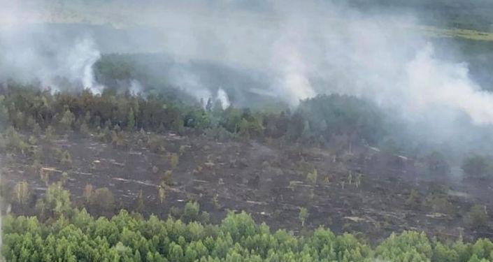 Tráva hoří v černobylské zakázané zóně