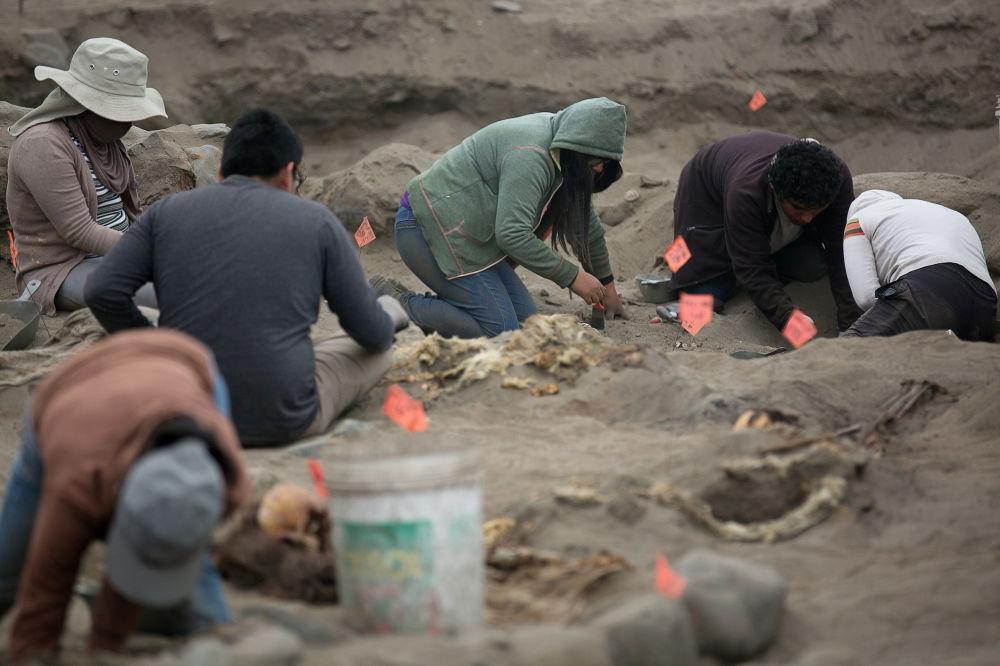 Archeologické vykopávky hromadného hrobu kultury Chimú, Pampa La Cruz, Peru