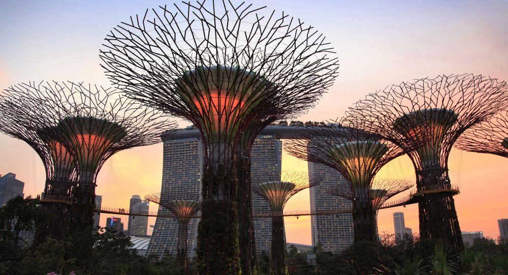Super stromy, Singapur