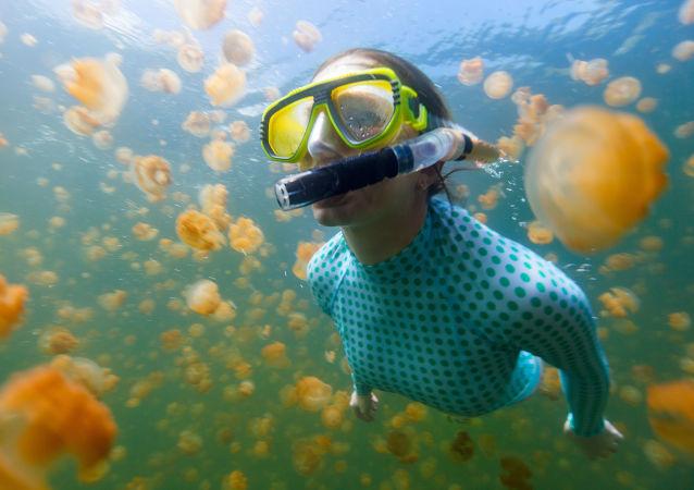 Jezero medúz: fantastický svět s 2 miliony zlatých a měsíčních podmořských obyvatel