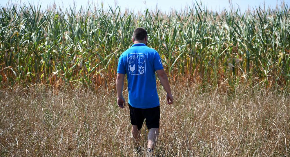 Farmář na vyschlém poli ve Francii