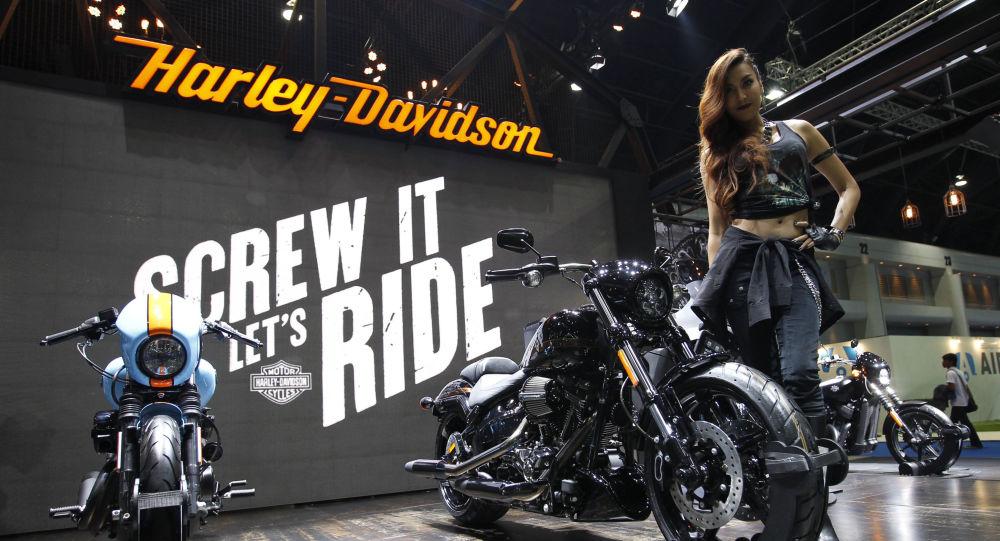 Modelka vedle motorek Harley-Davidson