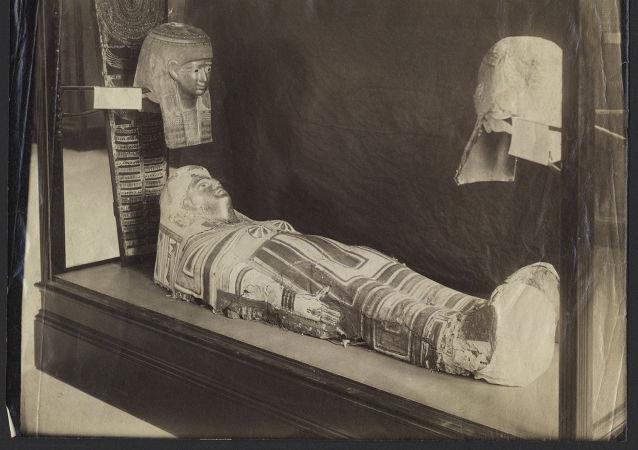 Starověká egyptská mumie v Stanfordském muzeu