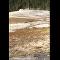 Turista se rozhodl vykonat svou potřebu v Yellowstonu