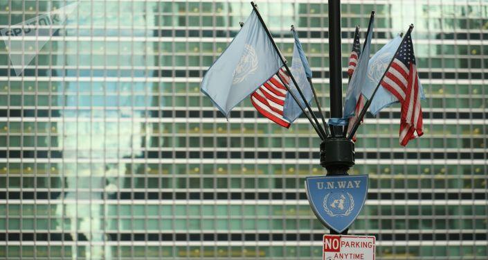 Vlajky USA a OSN