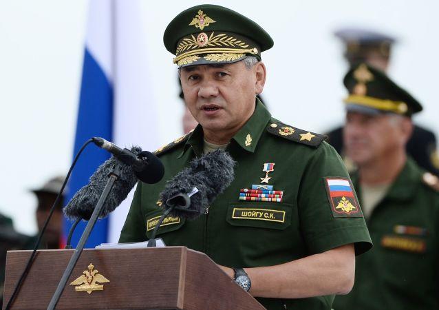 Ruský ministr obrany, armádní generál Sergej Šojgu