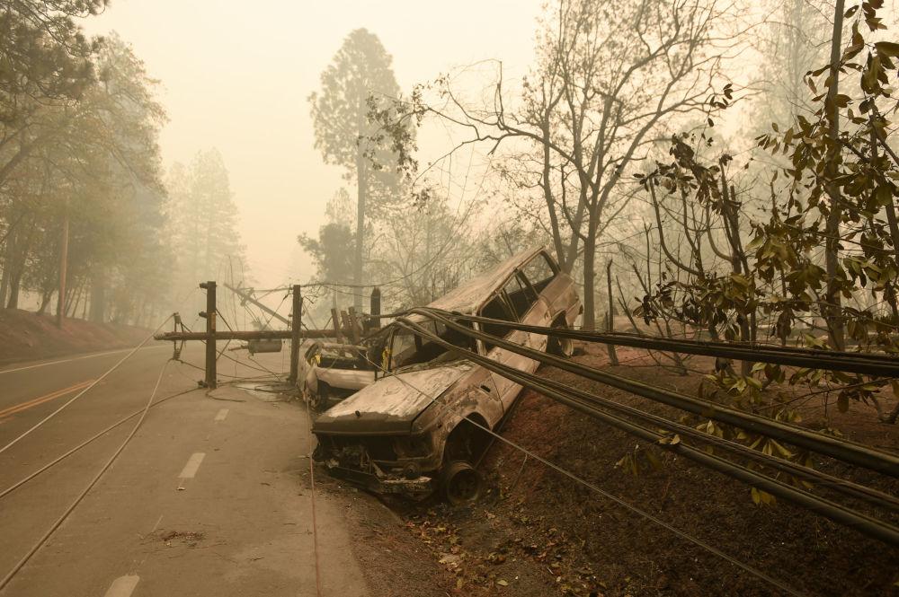 Tento týden v obrázcích: lesní požáry v Kalifornii a setkání evropských lídrů v Paříži