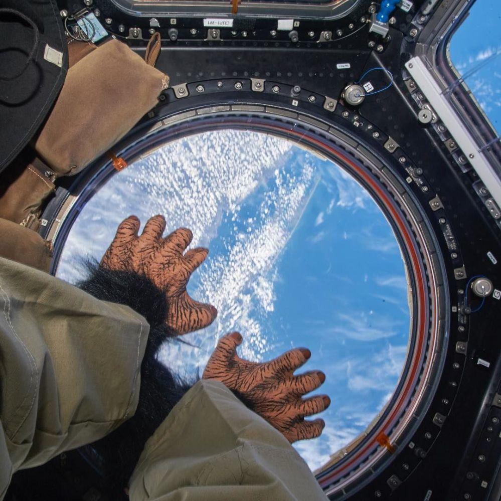 Vesmírný život. Jak žijí pozemšťani ve vesmíru