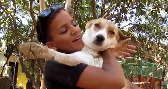 Neuvěřitelný zázrak! Pes porazil rakovinu!