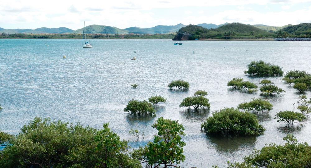 Pobřeží Nové Kaledonie, Francie