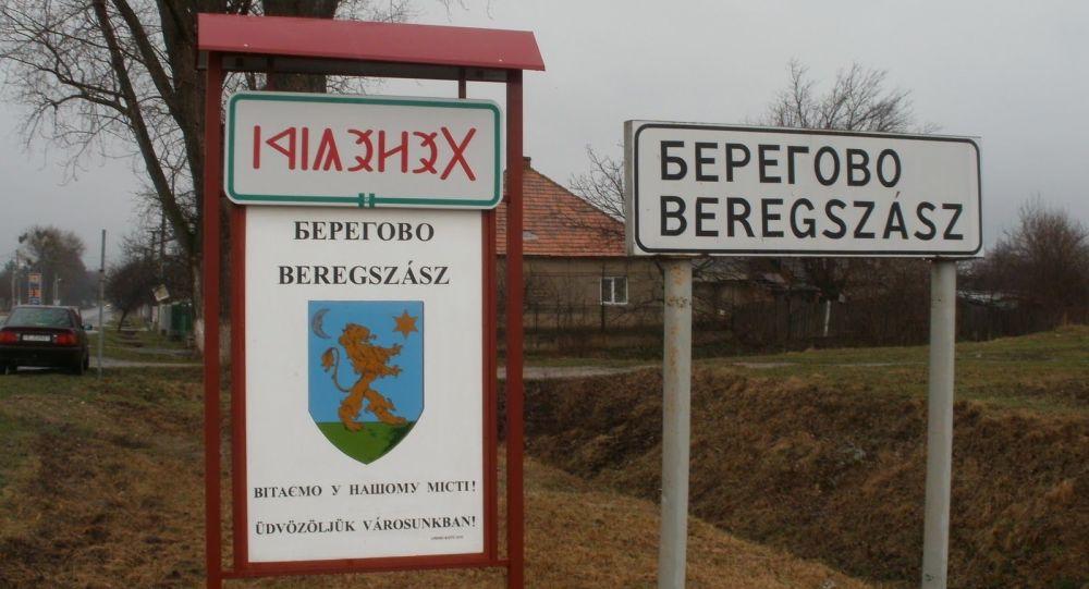 V Maďarsku přirovnali situaci v Zakarpatské oblasti k občanské válce