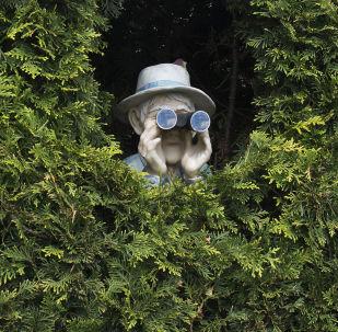 Špión. Ilustrační foto