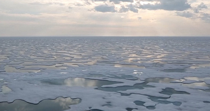 Led na Antarktidě taje katastrofální rychlostí. Co se stane, jestli to bude pokračovat?