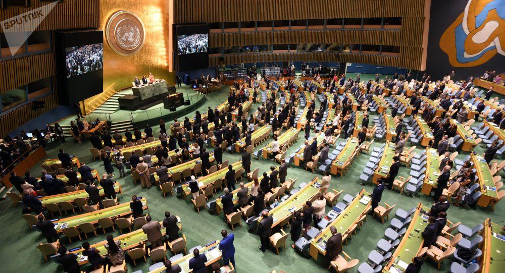 Valné shromáždění OSN