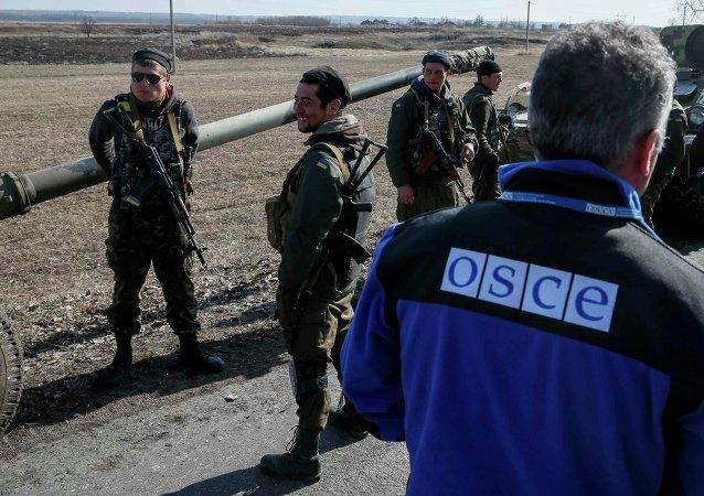 Představitel OBSE