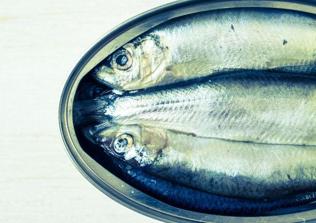 Rybí konzervy