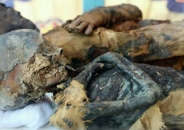Mumie objevené v hrobce z dob Ptolemaiovců v egyptském guvernorátu Suhag