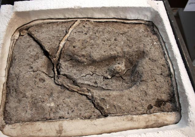 Nejstarší lidská stopa, kterou vědci nalezli v Chile