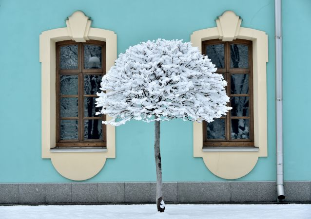 Sníh. Ilustrační foto