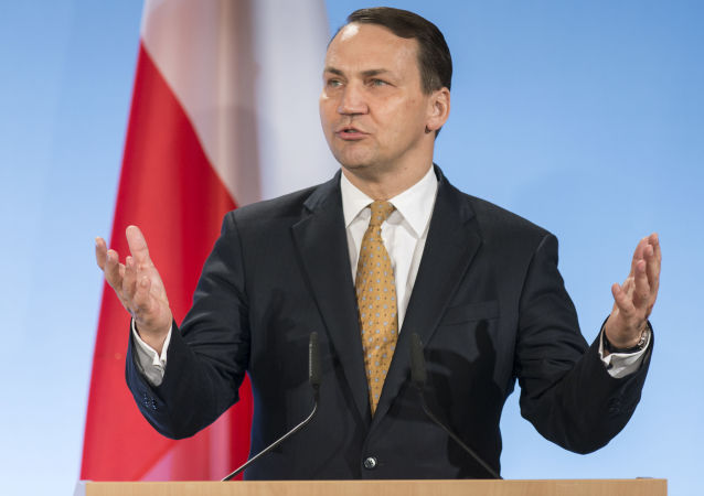 Tehdejší ministr zahraničních věcí Polska Radosław Sikorski, 2014