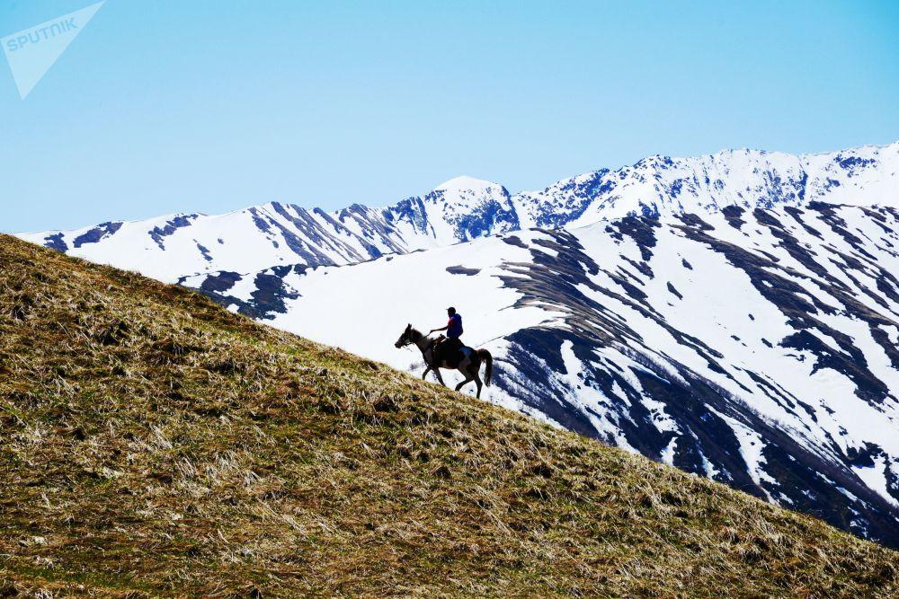 Jezdecká procházka na území pastviny Abago v severní oblasti Kavkazské chráněné krajinné oblasti.
