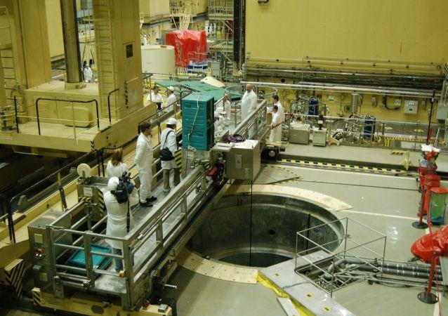 Jaderná elektrárna Paks