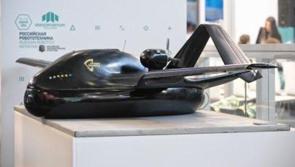 Bezpilotní létající přístroj Čirok, mladší model - Sputnik Česká republika