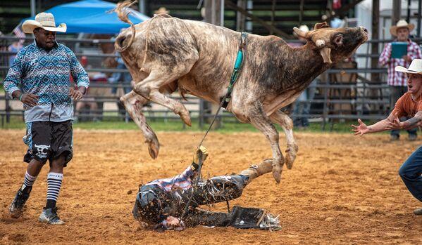 Býk odhazuje toreadora během rodea God and Country v Tucstonu v USA - Sputnik Česká republika