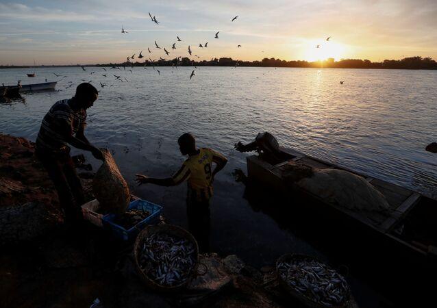 Rybáři umývají úlovek ve vodách řeky Nil v Súdánu