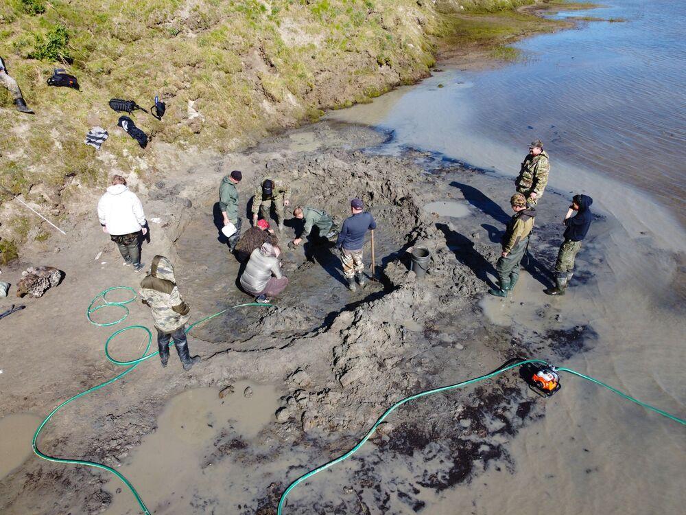 Unikátní nález: na Jamalu byla nalezena kostra dospělého mamuta