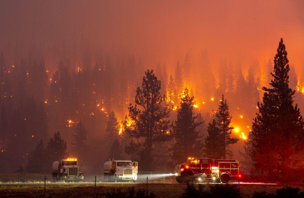 Hořící les v americké Kalifornii.