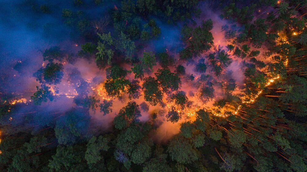 Hořící les v ruské Krasnojarské oblasti.