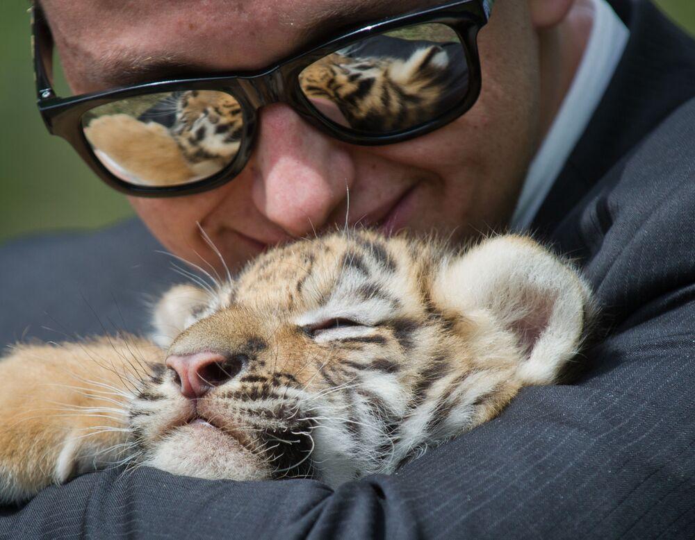 Návštěvník krymského parku Tajgan se fotí s tygřetem.