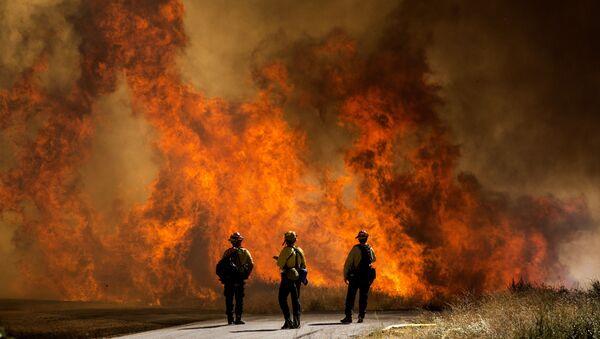 Hasiči v blízkosti hořící trávy v Kalifornii - Sputnik Česká republika
