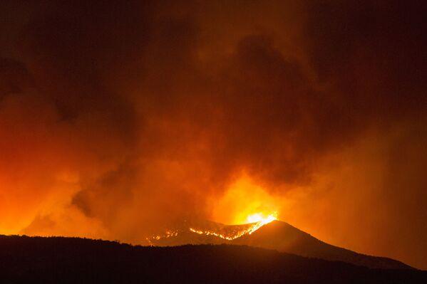 Hořící tráva v Kalifornii - Sputnik Česká republika