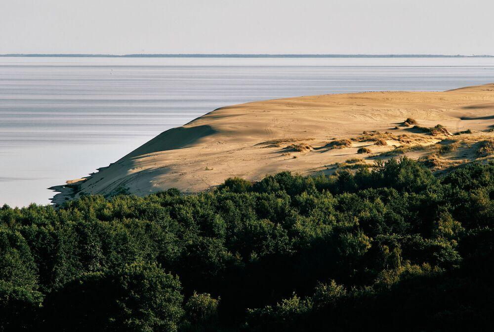 Pohled na duny z výšek Efa v národním parku Kurská kosa v Kaliningradské oblasti.