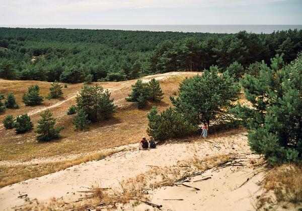 Pohled na duny z výšek Efa v národním parku Kurská kosa v Kaliningradské oblasti. - Sputnik Česká republika