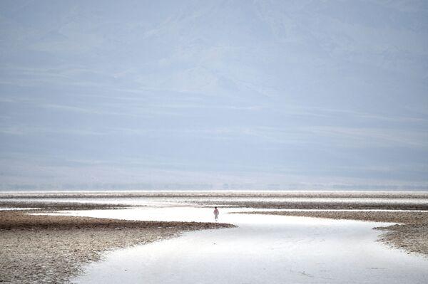 Slaniska v povodí bezodtoké pánve Badwater, která je nejníže položeným místem v Severní Americe. Má nadmořskou výšku −86 m. Národní park Údolí smrti, Kalifornie, USA. - Sputnik Česká republika