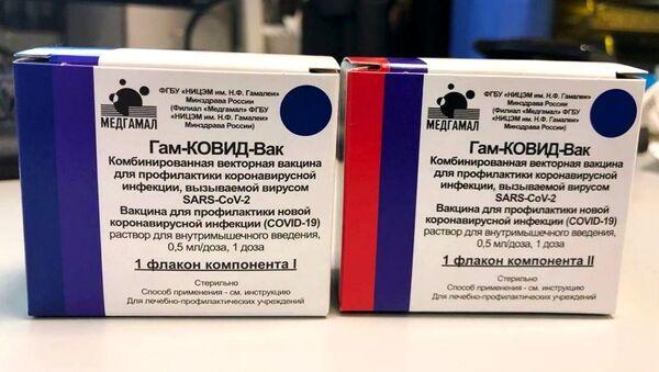 Balení ruské vakcíny proti covidu-19 - Sputnik Česká republika