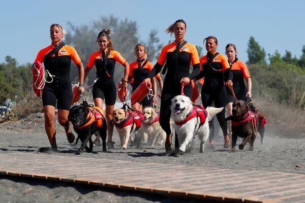 Skupina italských zachránkyň se svými psy na výcviku - Sputnik Česká republika